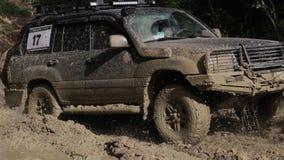 SUV expedicionário monta através das madeiras lentamente na estrada suja video estoque