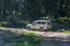 SUV fährt auf die Landstraße im Wald, Israel Lizenzfreies Stockfoto
