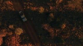 SUV för safari rider längs banan i savannet på solnedgången lager videofilmer