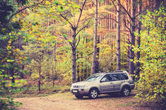 Suv in forest Royalty Free Stock Images