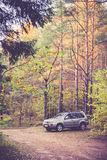 Suv in forest Stock Image