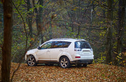 SUV in the forest royalty free stock photo