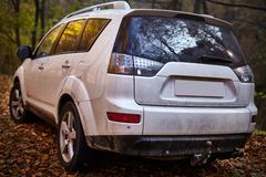 SUV in the forest Royalty Free Stock Images
