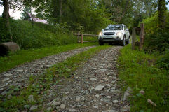 SUV on Forestry road Royalty Free Stock Image
