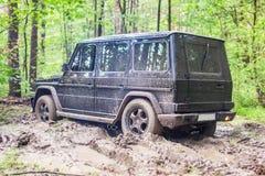 SUV gekregen die in de modder in bos wordt geplakt, off-road Royalty-vrije Stock Afbeeldingen