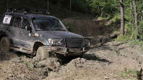 SUV got stuck in the mud and trying to go out via winch in the forest. stock footage