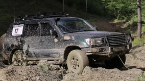 SUV got stuck in the mud and trying to go out via winch in the forest. stock video footage