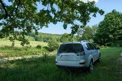 SUV im Wald Lizenzfreies Stockfoto