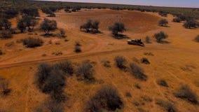 SUV med jägare går vidare slingorna av Namibia stock video