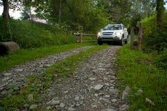 SUV na estrada da silvicultura Imagem de Stock Royalty Free