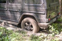 SUV obteve colado na lama na floresta, fora de estrada Imagens de Stock Royalty Free