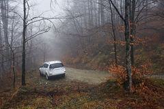 SUV offroad on a foggy day Royalty Free Stock Image