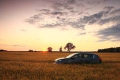 SUV op een tarwegebied Stock Foto
