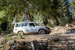 SUV rider på landsvägen i skogen, Israel Arkivfoton