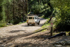 SUV-ritten op de landweg in bos, Israël Royalty-vrije Stock Afbeelding