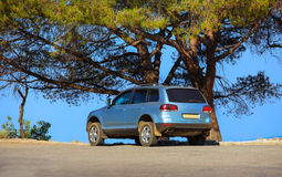 SUV on seashore under tree Stock Photo