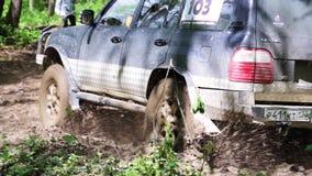 SUV spedizione guida lentamente attraverso la foresta stock footage