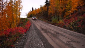 An SUV travels the primitive road to McCarthy Alaska in the Fall. Primitive Gravel Road Leads on Autumn Fall Foliage Alaska stock video