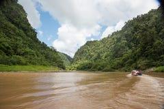 Longboat Canoe Journey Stock Photo