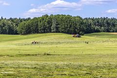 Suwalki Landscape Park in Poland. Royalty Free Stock Photo