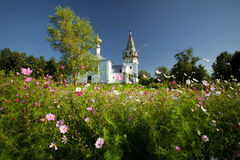 Suzdal church. Church in Suzdal, view from bed with cosmos flowers. Russian Federation Royalty Free Stock Images
