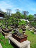 Suzhou Obraz Royalty Free