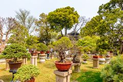 The Humble Administrator's Garden Royalty Free Stock Photo