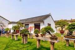 The Humble Administrator's Garden Royalty Free Stock Image