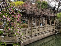 Lion Grove Garden, a classical Chinese garden and part of Unesco World Heritage in Suzhou. Suzhou, China - March 23, 2016: Springtime in Lion Grove Garden, a stock images