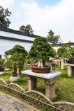 SUZHOU, CINA - 23 ottobre 2013: Albero dei bonsai nel giardino umile del ` s dell'amministratore Fotografia Stock Libera da Diritti