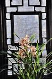Suzhou humble administrator's garden Stock Photos