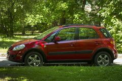 Suzuki red car. Suzuki red car background of green trees in summer royalty free stock photo