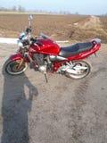 Suzuki. Bandit motorbike horsepower speed stock image