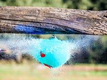 Sväller explosion, när du slås av en pil Closeuphög-hastighet skott Royaltyfria Bilder