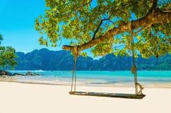 Svänga hängning från kokospalmen över stranden, Thailand Arkivfoton