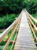 Svängande bro över en liten vik Royaltyfria Foton