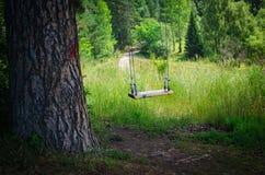 Svängande tomma barns gunga i skog Arkivfoto
