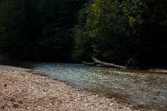 Svärta floden royaltyfria bilder
