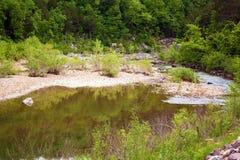 Svärta floden arkivbilder