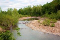 Svärta floden royaltyfri bild