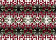Svärta med vit lutningbakgrund från girlander av röda rosor Arkivfoto