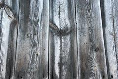 Svärta med vita träplankor, abstrakt naturlig bakgrund Arkivbild
