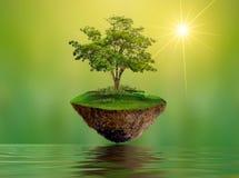 Sväva öar med trädsjöfloden i miljön för dag för beskydd för värld för dag för himmelvärldsmiljö royaltyfri foto
