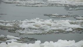 Sväva för isflak stock video