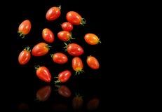 Sväva för tomater arkivfoton