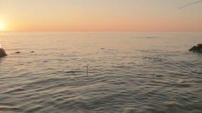 Sväva med handgjorda flöten för en fågelfjäder i havet, och lås fiskar stock video