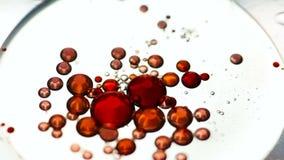 Sväva röda olje- droppar på vattenyttersida arkivfilmer