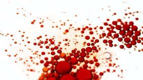 Sväva röda olje- droppar på vattenyttersida stock video