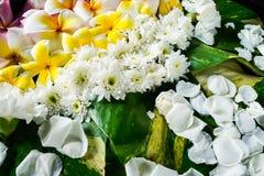 Sväva skorrar sorterade blommor i ett stort vatten royaltyfri fotografi