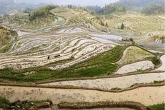 Svago degli ospiti nelle montagne, agricoltori che coltivano nei campi a terrazze Fotografia Stock